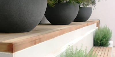 Large planters and seating by Rae Wilkinson: modern Garden by Rae Wilkinson Design Ltd