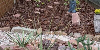 Schattengarten: mediterraner Garten von Andreae Kakteenkulturen