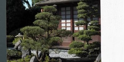 Karesansui - Trockenlandschaftsgarten - Japanese Dry Landscape Garden: asiatischer Garten von Kokeniwa Japanische Gartengestaltung