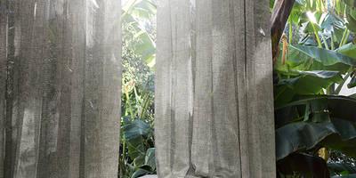 DANDELION Collection:  de estilo  de Alhambra