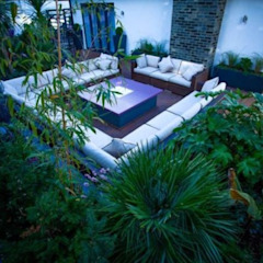 Tropical Retreat Tropical style garden by Cool Gardens Landscaping Tropical
