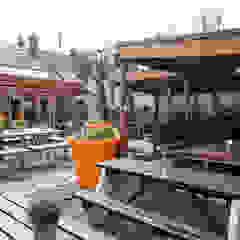 THe Plough Harborne - Garden Area de Spencer Swinden