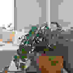 IE Arquitetura + Interiores Modern living room