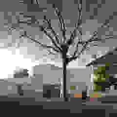 The Camberwell Curve Casas estilo moderno: ideas, arquitectura e imágenes de Nic Antony Architects Ltd Moderno