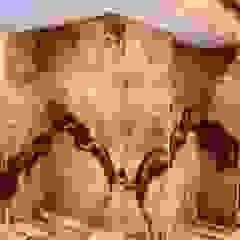 Luxury Stone / Billionaire Furniture Club อาคารสำนักงาน ร้านค้า