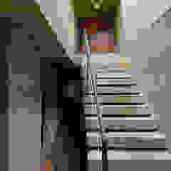 世田谷・桜の住宅 モダンスタイルの 玄関&廊下&階段 の 井上洋介建築研究所 モダン