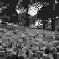 BAZALT KÜPTAŞ Modern Garden
