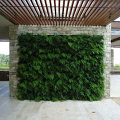 by Quadro Vivo Urban Garden Roof & Vertical Rustic