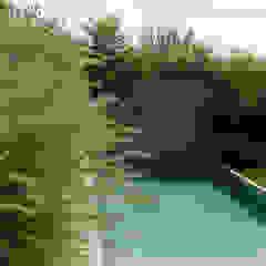 matiteverdi Modern garden