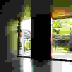 TACO Taller de Arquitectura Contextual Modern windows & doors