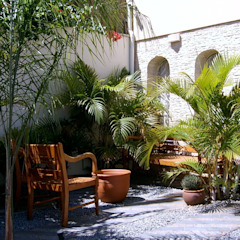 Tropical style gardens by italiagiardini Tropical