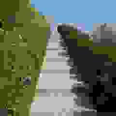 Luserna Stone 庭院