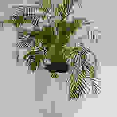 Kronen 65 Planter In White Concrete Adam Christopher Design Garden Plant pots & vases Concrete White
