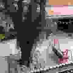 من Casa Nova Paisagismo ريفي