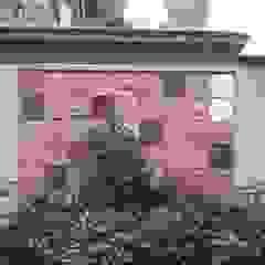 Nino Ventura & C. Mediterranean style garden