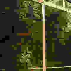 Centros comerciales de estilo tropical de abelia peyzaj Tropical