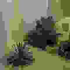 アアキ前田 株式会社 Eclectic style garden