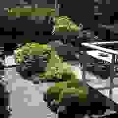 Biesot Tuinen & Parken Moderne tuinen van Biesot Modern