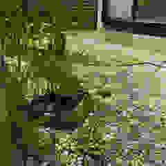 Modern Garden by T's Garden Square Co.,Ltd. Modern