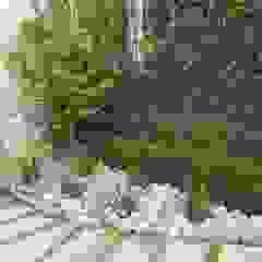 Jardines de estilo minimalista de Vivero Sofia Minimalista