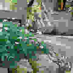 Cottage garden style planting من Barnes Walker Ltd ريفي