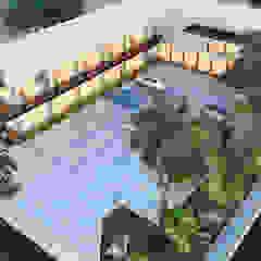 COMPLEJO PLACITA 20-3 Jardines de estilo moderno de ANGOLO-grado arquitectónico Moderno