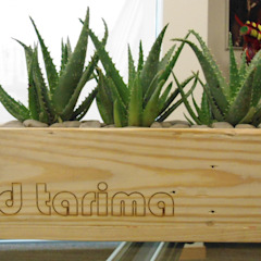 d tarima Garden Accessories & decoration