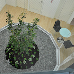 Jardines de estilo moderno de 有限会社Y設計室 Moderno