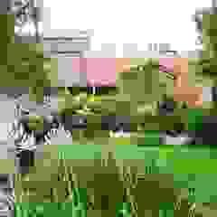 Remodelación Jardín Buenos Aires Casas tropicales de abpaisajismo Tropical