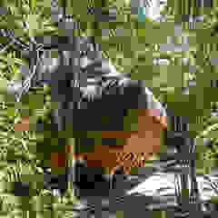 Universo Pol - Morro de San Pablo Estudios y oficinas tropicales de IR arquitectura Tropical Bambú Verde