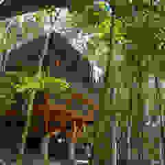 Universo Pol - Morro de San Pablo Casas tropicales de IR arquitectura Tropical Bambú Verde