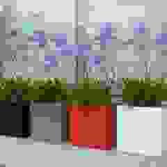 Bacs à fleurs de la gamme Buxus par SO GARDEN Moderne