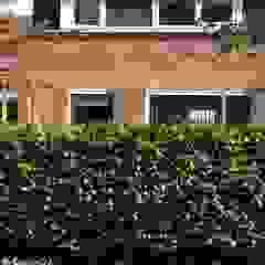 Familie tuin Utrecht Scandinavische tuinen van Buro Floris Scandinavisch