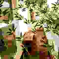 من Marcia Debski Ferreira Designer de Interiores حداثي