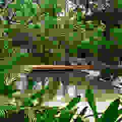 Piscine tropicale par BR ARQUITECTOS Tropical