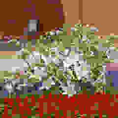第64回全国植樹祭お野立所 モダンなスタジアム の 杵村建築設計事務所 モダン