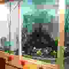 Modern Garden by CouturierStudio Modern