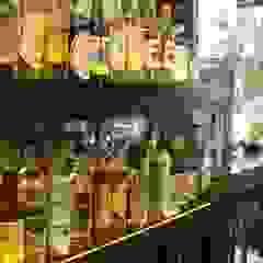 Bar do colecionador Adegas tropicais por Studio HG Arquitetura Tropical