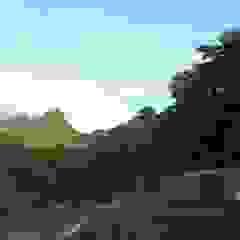 by CONTENHOUSE S.L.L. Tropical
