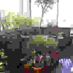 Klassischer Balkon, Veranda & Terrasse von Potager Klassisch