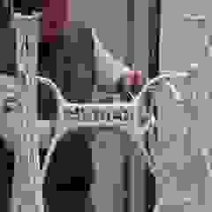 modern  by Marian de las Camelias, Modern Iron/Steel