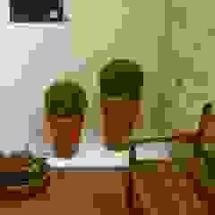 PAISAGISMO: JARDINS DE INVERNO BY MC3 Jardins de inverno minimalistas por MC3 Arquitetura . Paisagismo . Interiores Minimalista