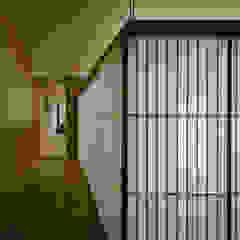 私の家 モダンな 窓&ドア の TRANSTYLE architects モダン