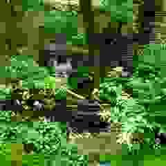 水の動きを楽しむ蹲の庭 アジア風 庭 の Enatsu Garden Architect / 江夏庭苑事務所 和風
