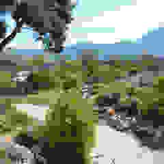 od Landscape Design Environnement Śródziemnomorski