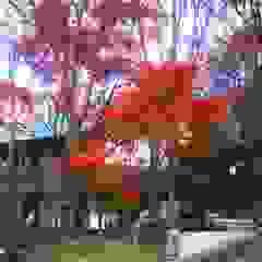 施行事例 Modern Garden by 自然景観設計舎.LTD Modern