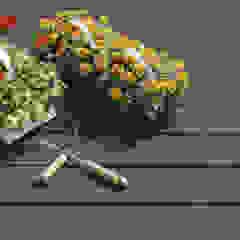 NovaDeck es la mejor alternativa a los decks tradicionales de madera, plástico-madera o PVC. Jardines de estilo moderno de FORMICA Venezuela Moderno Madera Acabado en madera