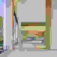緑豊かな公園に隣接 プライバシーを守りながら開放的に住まう Y字路の家 モダンな 窓&ドア の 小笠原建築研究室 モダン 無垢材 多色