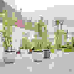 Jardins escandinavos por homify Escandinavo