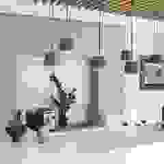 House Snyman by Salomé Knijnenburg Interiors Modern